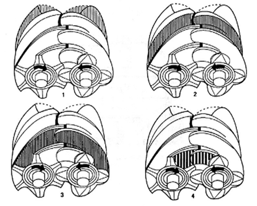 螺杆式空压机原理